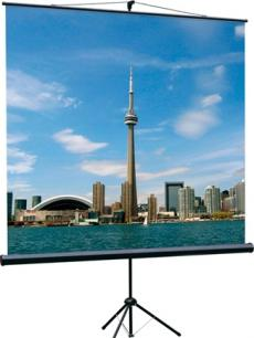 [LEV-100103] Экран на штативе Lumien Eco View 200x200 см Matte White с возможностью настенного крепления