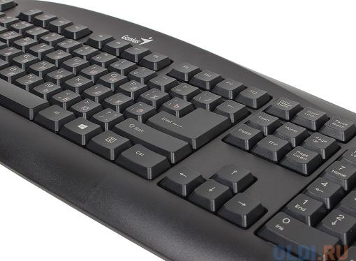 клавиатура genius  kb-110 usb, black
